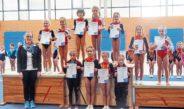 Bezirksmeisterschaft: TSV-Turnerinnen erfolgreich